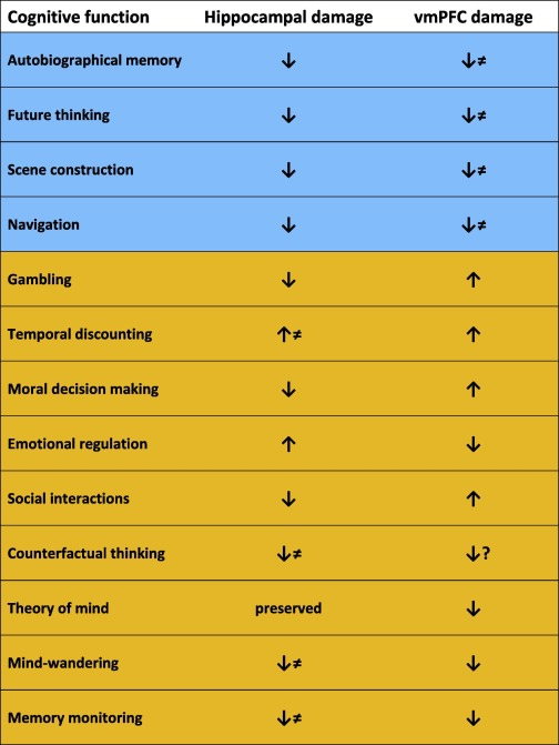 Comparing and Contrasting the Cognitive Effects of Hippocampal and
