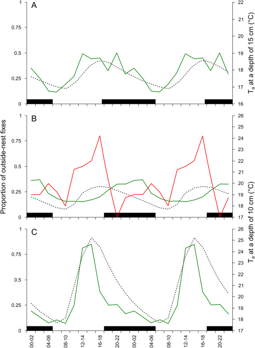 Thermal Biology Of A Strictly Subterranean Mammalian Family The