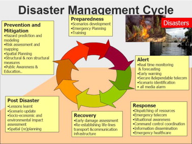 Disaster management project class 10 solved