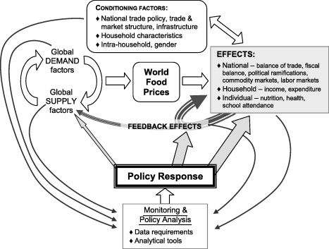 Information to guide policy responses to higher global food
