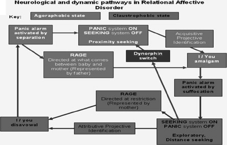 Narcissistic disorder and the failure of symbolisation: A Relational