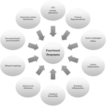 Is small intestinal bacterial overgrowth involved in the
