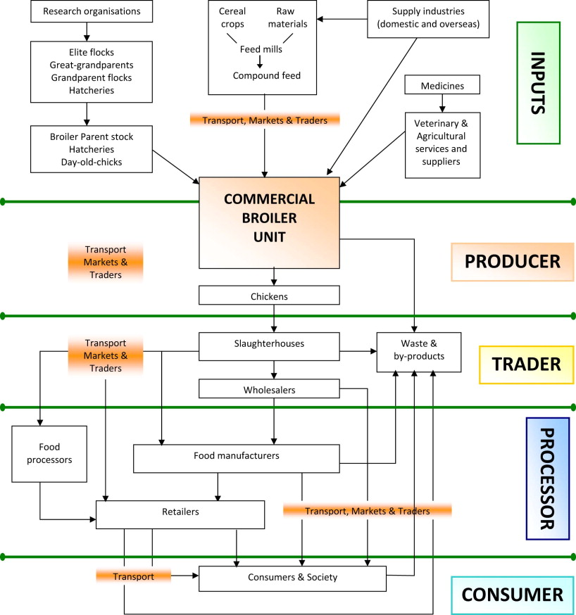 A Conceptual Study Of Value Chain Analysis As A Tool For Assessing A