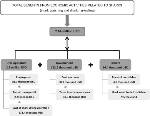 The economic role of sharks in a major ecotourism