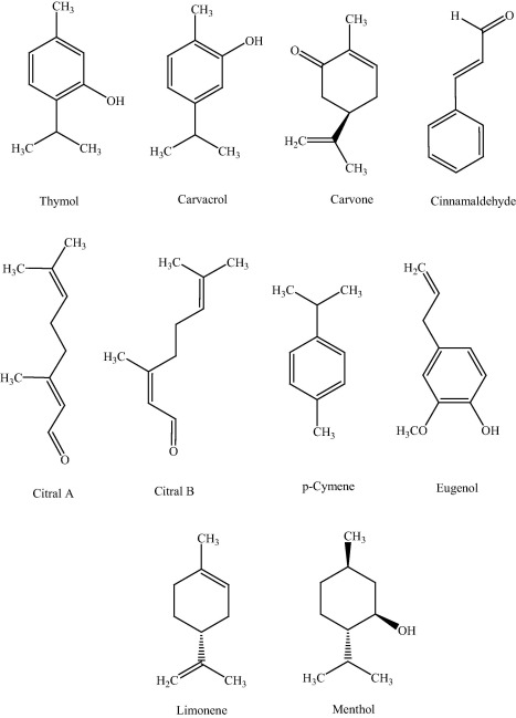 Antibacterial and antifungal activities of thymol: A brief