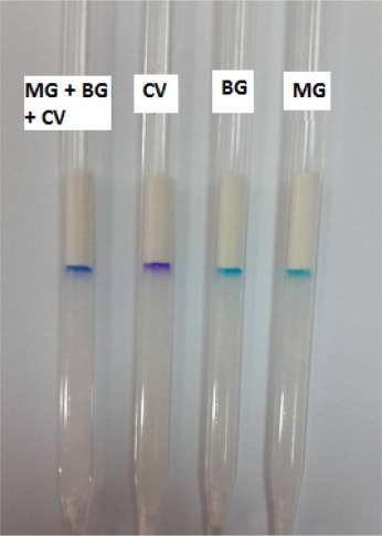Mini-column assay for rapid detection of malachite green in