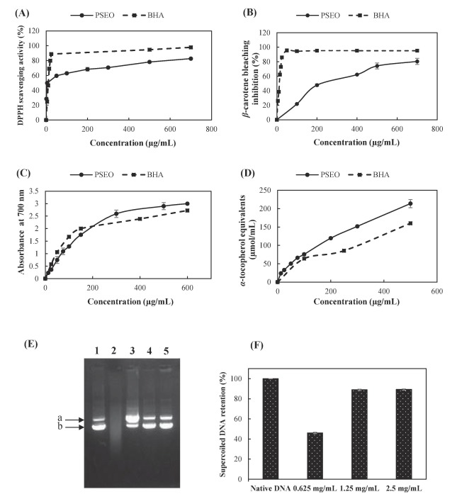 Composition, antibacterial and antioxidant activities of Pimpinella