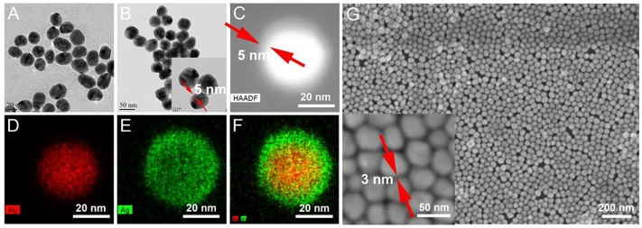 Two-dimensional Au@Ag Nanodot Array for Sensing Dual