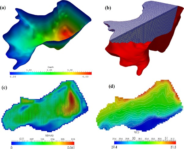 A framework to simulate small shallow inland water bodies in