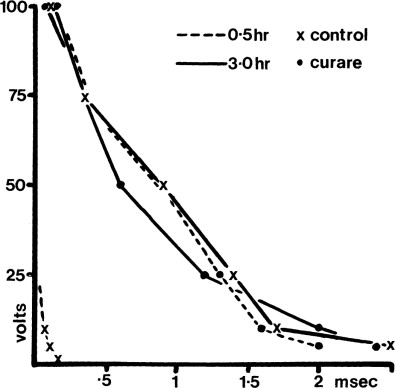 Sensitivity Of Prerigor Beef Muscle To Electrical Stimulation