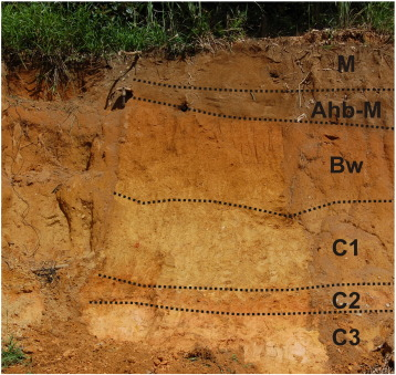 What Do Yellowish Brown Soils And Stone Layers Tell Us About Late Quaternary Landscape Evolution And Soil Development In The Humid Tropics A Field Study In The Serra Dos Orgaos Southeast Brazil