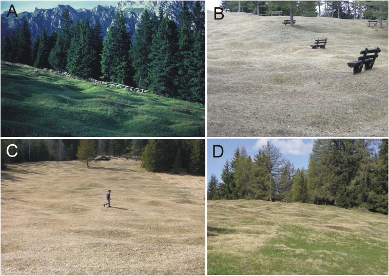 Geomorphic edge effects in response to abiotic and anthropogenic