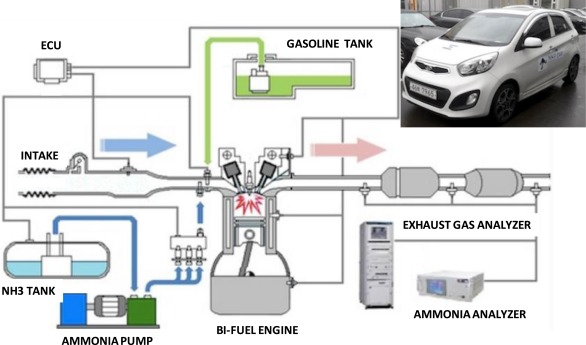 PURE GASOLINE GAS /& OIL PUMP GLOBE FREE S/&H G-206