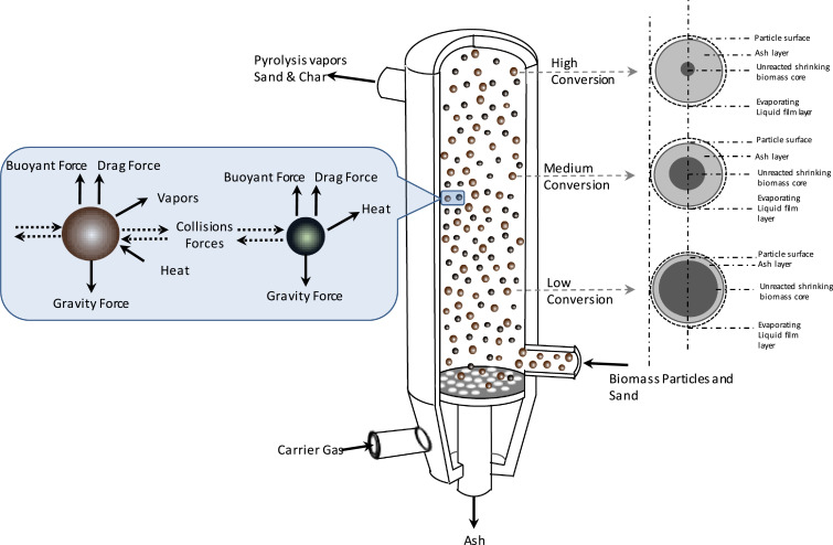 The multi-scale challenges of biomass fast pyrolysis and bio