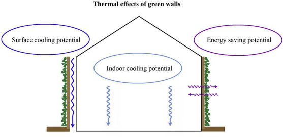 Vertical Greening Systems A Review On Recent Technologies And