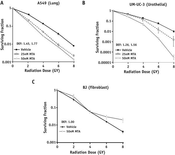 Mithramycin A Enhances Tumor Sensitivity to Mitotic