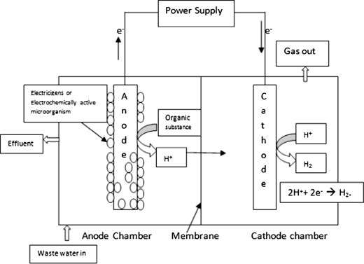 An overview of cathode material and catalysts suitable for