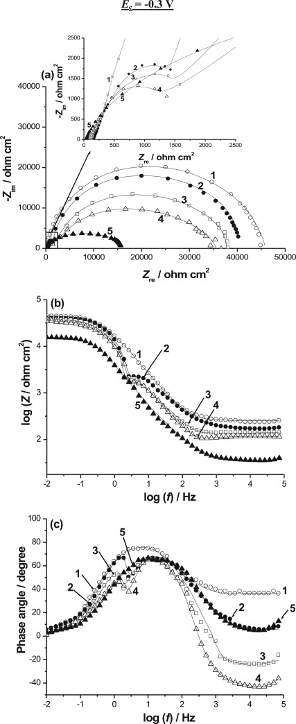 In Situ Aqueous Synthesis Of Silver Nanoparticles Supported On