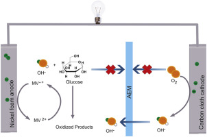 Performance of a low-cost direct glucose fuel cell with an