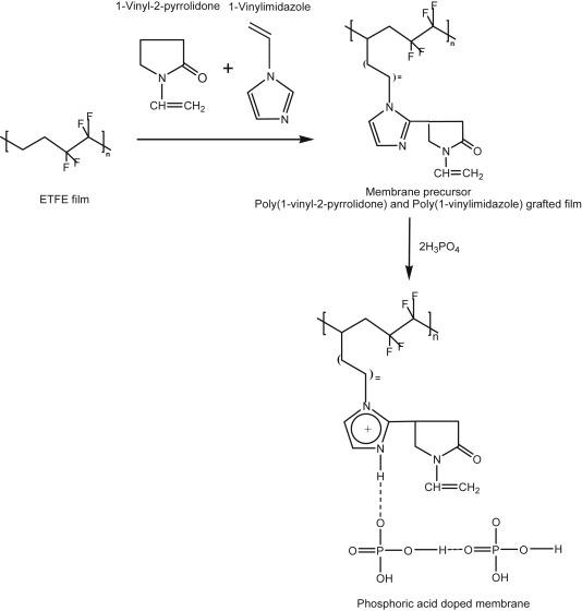 Phosphoric Acid Doped Polymer Electrolyte Membrane Based On Radiation Grafted Poly 1 Vinylimidazole Co 1 Vinyl 2 Pyrrolidone G Poly Ethylene Tetrafluoroethylene Copolymer And Investigation Of Grafting Kinetics Sciencedirect