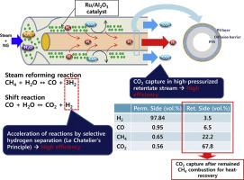 Membrane Reactors for Hydrogen Production