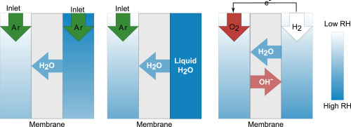 Quantifying water transport in anion exchange membrane fuel