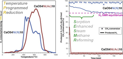 Effect of Ni precursor salts on Ni-mayenite catalysts for