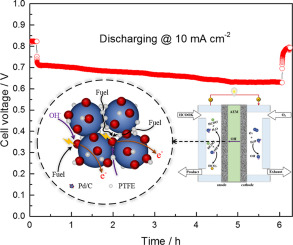 Understanding mass and charge transports to create anion