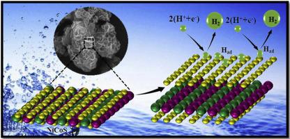 Transition-metal-based NiCoS/C-dot nanoflower as a stable