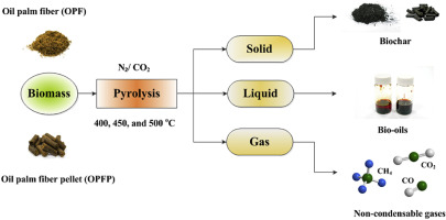 Characteristics of products from the pyrolysis of oil palm