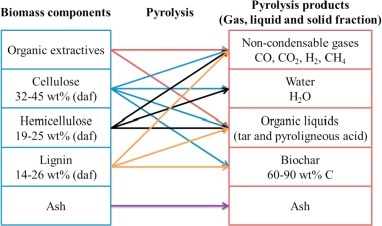 Insights into biochar and hydrochar production and