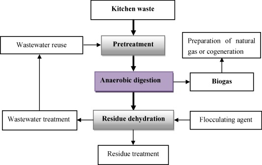 Study on the comprehensive utilization of city kitchen waste