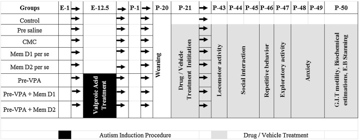 Memantine ameliorates autistic behavior, biochemistry