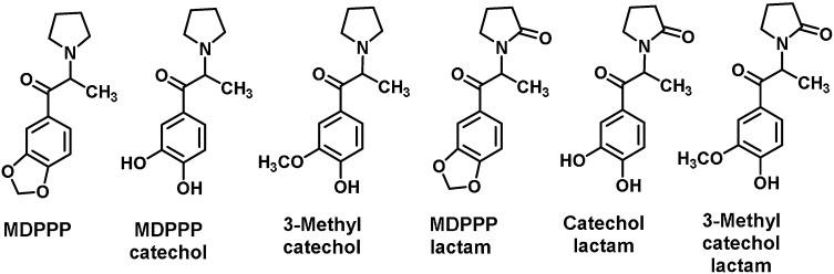 Neurobiology of 3,4-methylenedioxypyrovalerone (MDPV) and α
