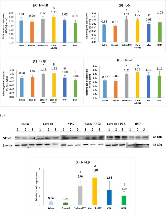 Effect of dimethyl fumarate on neuroinflammation and