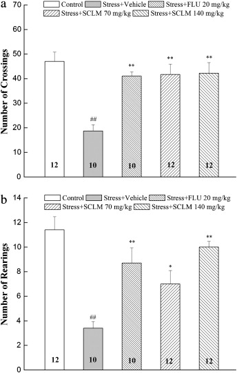 Antidepressant-like effects of the saponins extracted from
