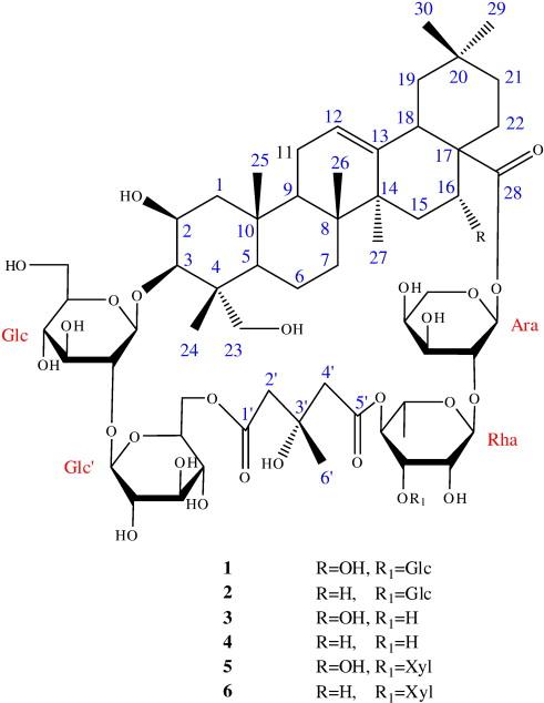 Cyclic Bisdesmosides From Actinostemma Lobatum Maxim Cucurbitaceae