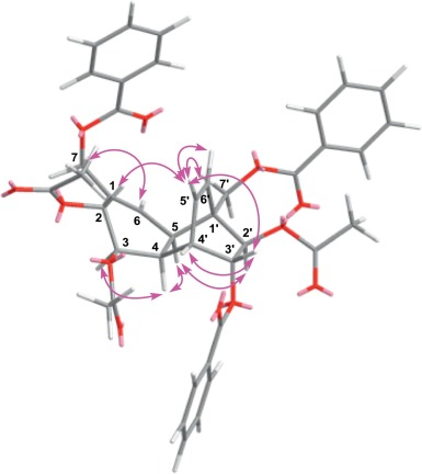 Antimalarial Polyoxygenated Cyclohexene Derivatives From The Roots