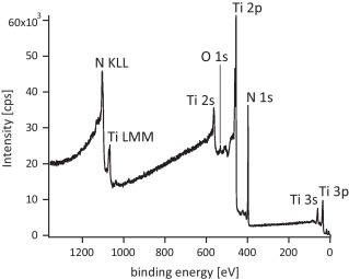 A complete and self-consistent evaluation of XPS spectra of TiN