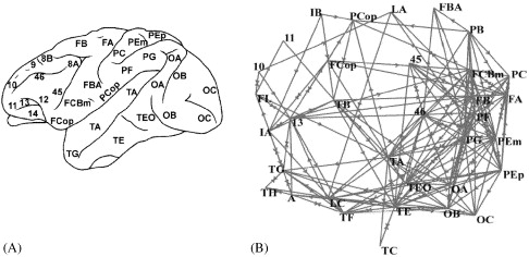 Complex networks: Structure and dynamics - ScienceDirect