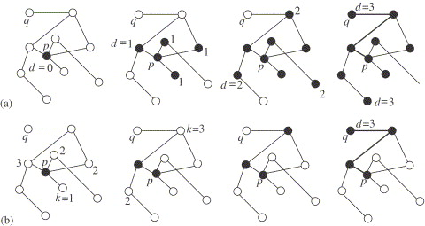 Complex Networks Structure And Dynamics