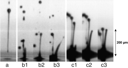 The dynamics of the piezo inkjet printhead operation - ScienceDirect