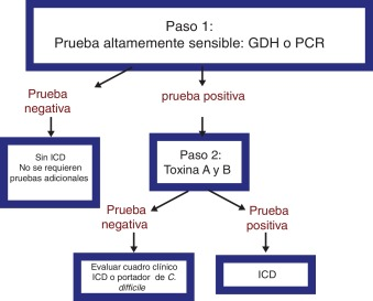 toxina clostridium difficile