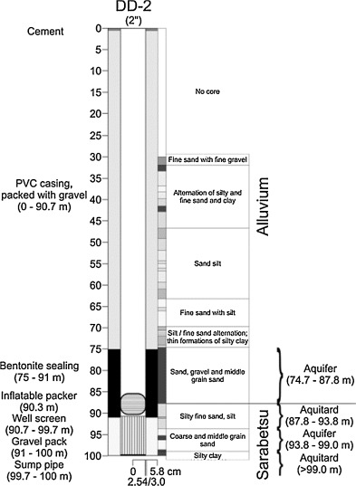 Study of the effects of the chaser in push–pull tracer tests by