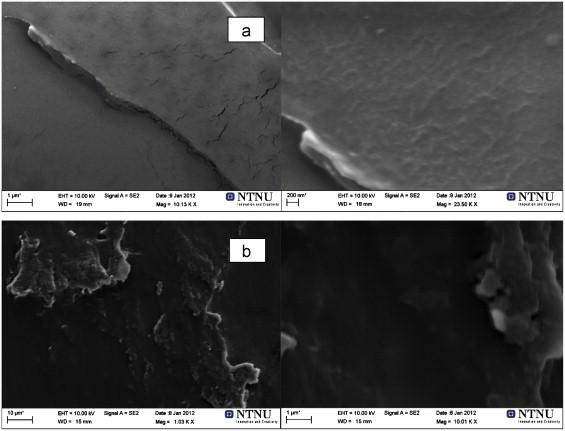 Polyvinyl acetate/titanium dioxide nanocomposite membranes for gas