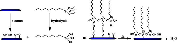 Morphological and hydrophobic modifications of PVDF flat