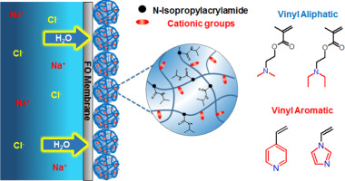Thermoresponsive cationic copolymer microgels as high