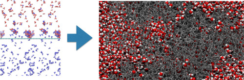 Multiscale molecular simulations of the formation and