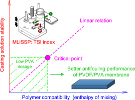 Relationship between polymers compatibility and casting solution
