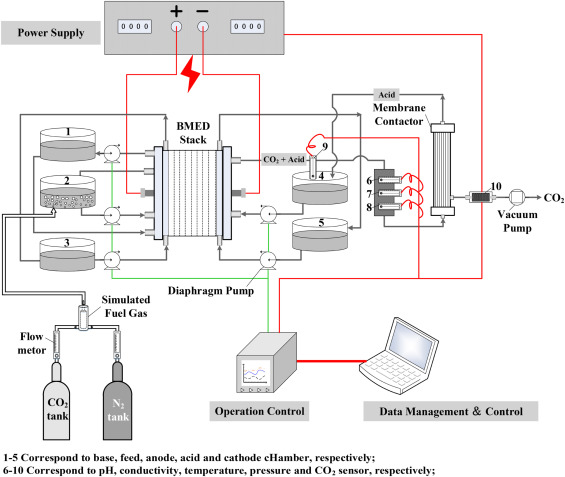 Simultaneous CO2 Capture And Amino Acid Production Using